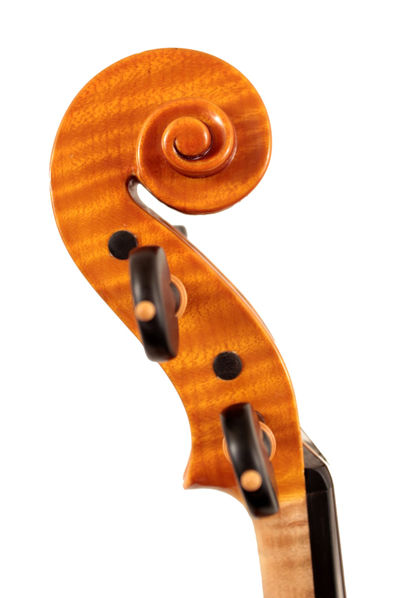 Violin by Gianluca Poli Bologna 2007 for sale at Bridgewood and Neitzert London