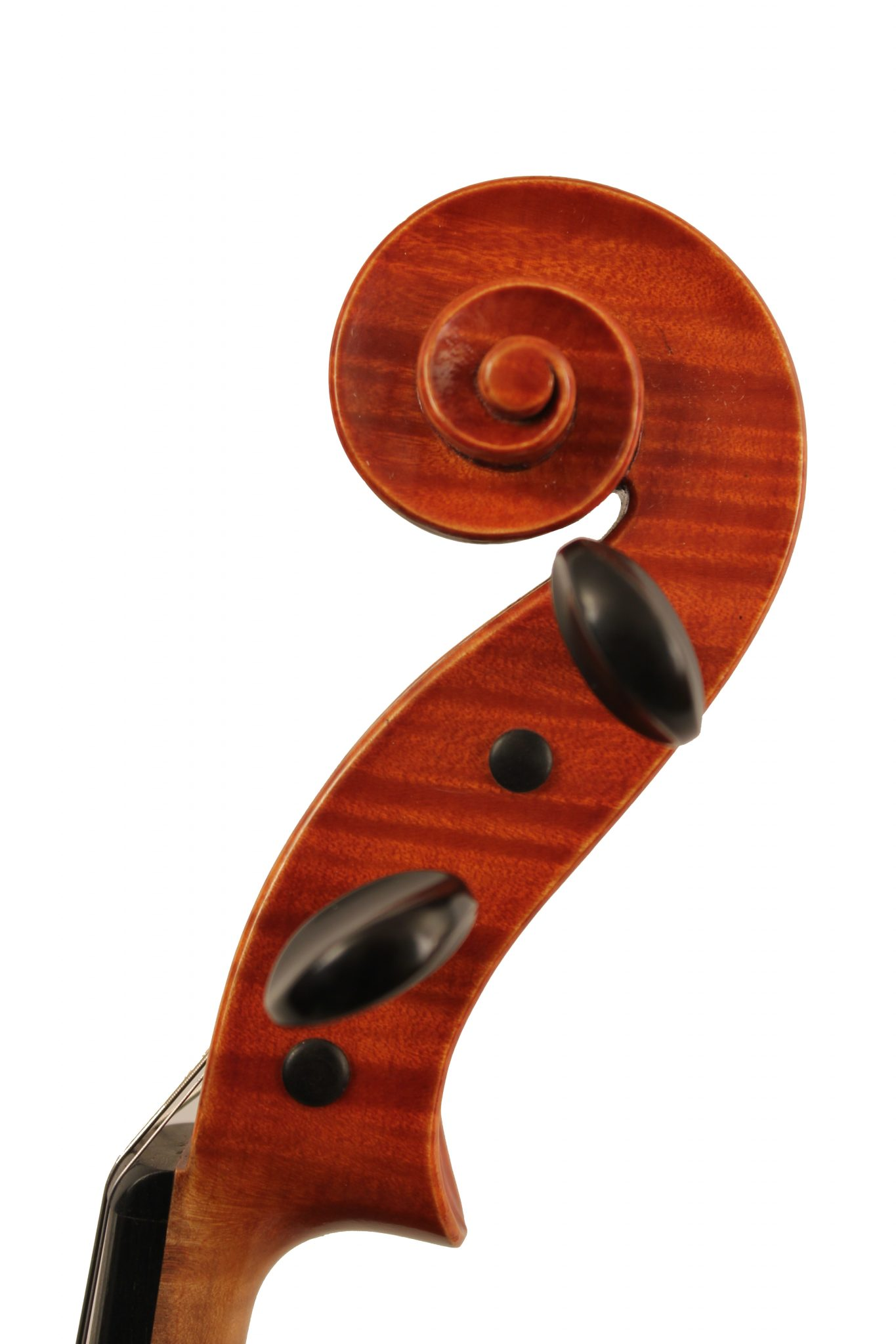 Viola by Suzanne Kuster 2006 for sale at Bridgewood and Neitzert London
