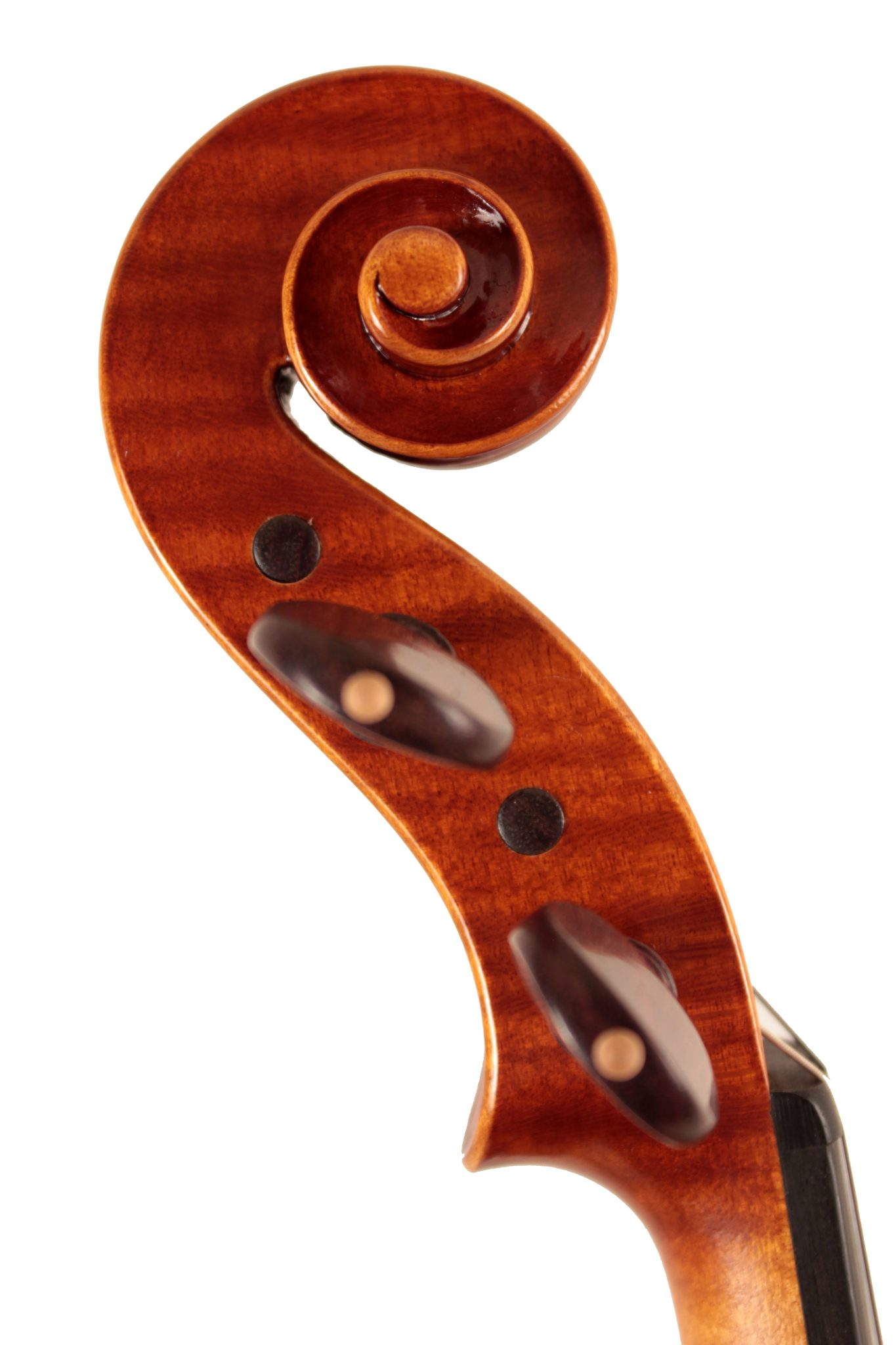 Violin by Federico Falaschi, Perugia 2014 for sale at Bridgewood and Neitzert London