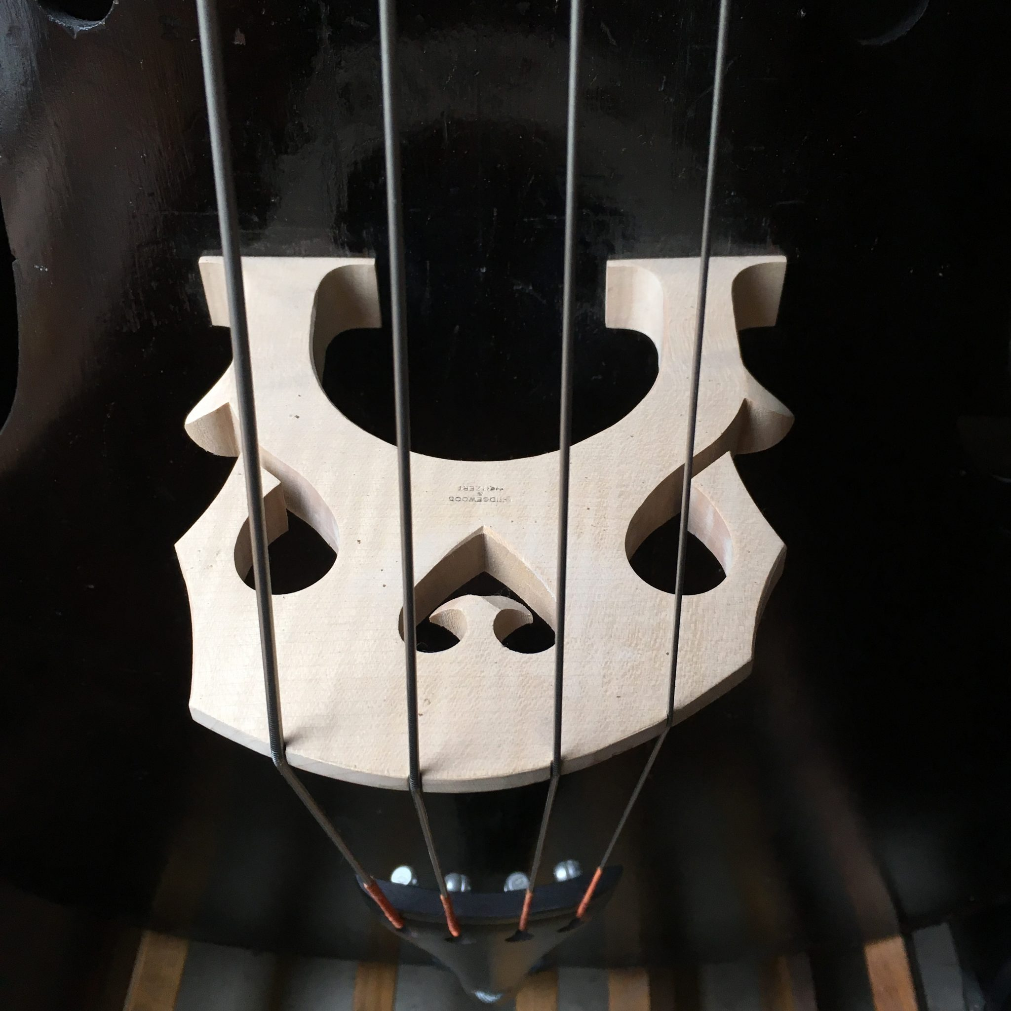 German double bass c1850 for sale at Bridgewood and Neitzert London