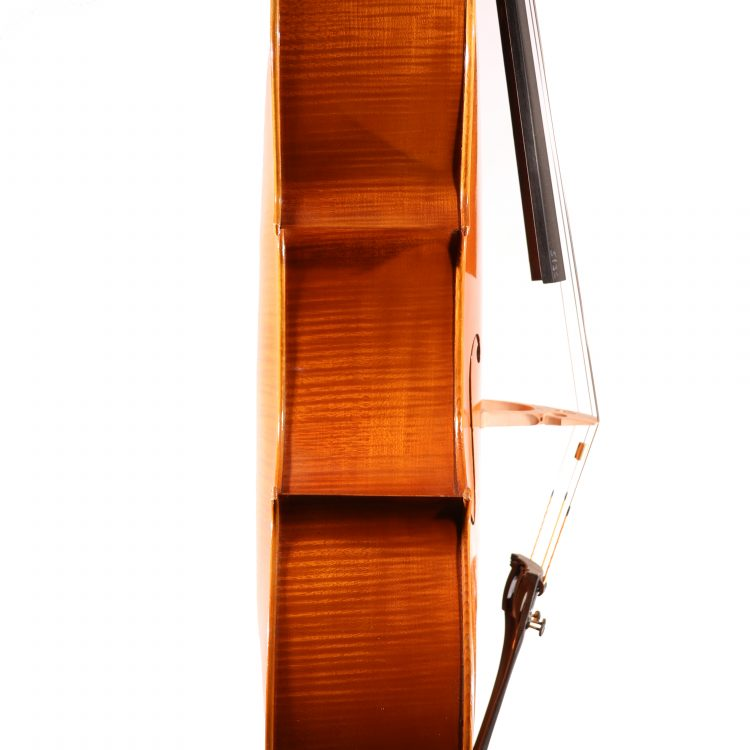 Cello by Fergus Anderson, London 1994