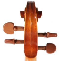 Bridgewood and Neitzert Espressivo Violin Outfit
